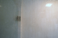 Shower Glass Before
